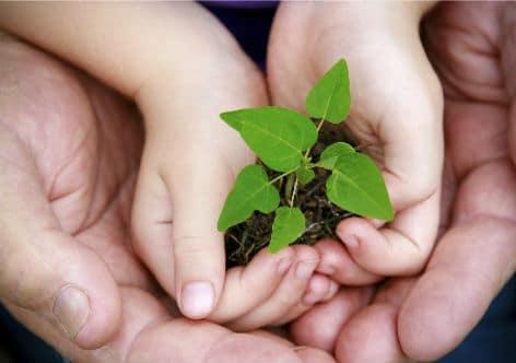 Crescimento Sustentável